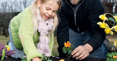 Hent god kompost til haven – helt gratis